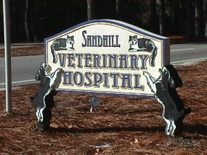 sandhills veterinary sandblasted hdu sign the dogs are the supports for the sign classic signs nc