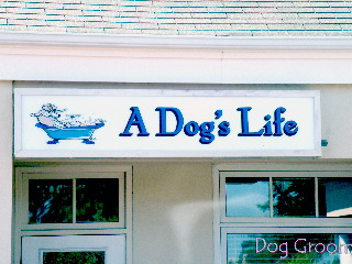 a dogs life backlit sign classic signs nc320x240
